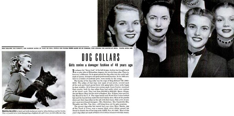La revista Life publico el articulo collares para perros